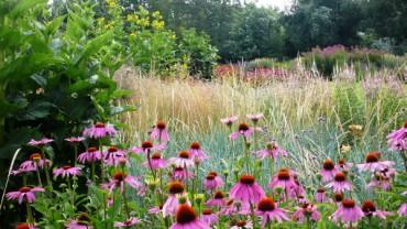 Tourisme Vert A Mulhouse Paysage Naturel Parc Floral Les