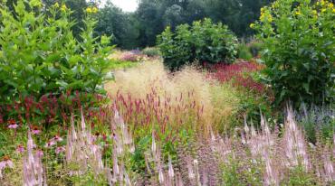 Histoire du parc floral les jardins du temps alsace illzach for A propos du jardin